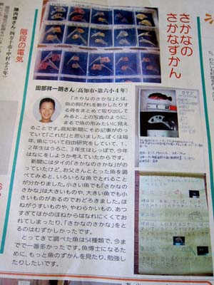 2013.11.21UP 「すごいぞ小学生の自由研究・工作」こども高知新聞掲載