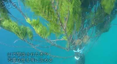 141110 NHK BSプレミアム ニッポンの「里山」ふるさとの絶景に出会う旅 放映